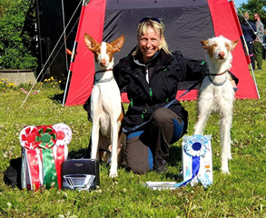 20190511-Dansk-Myndeklubb-Int-Lure-Coursing-Domare-1a-poaeng-Cert-DK-LCCH-Chirons-Im-A-Rocker-2a-poaeng-Heron-And-Hounds-Waitin-To-Smile-Fotograf-Roger-Nilsson.jpg